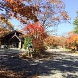 榛名湖オートキャンプ場でしっとり紅葉キャンプ
