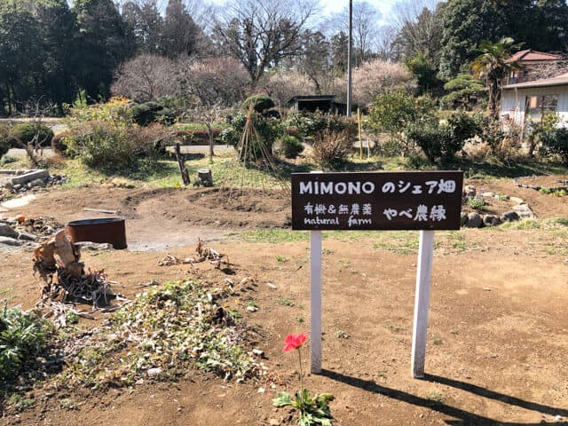 熊谷MIMONO8