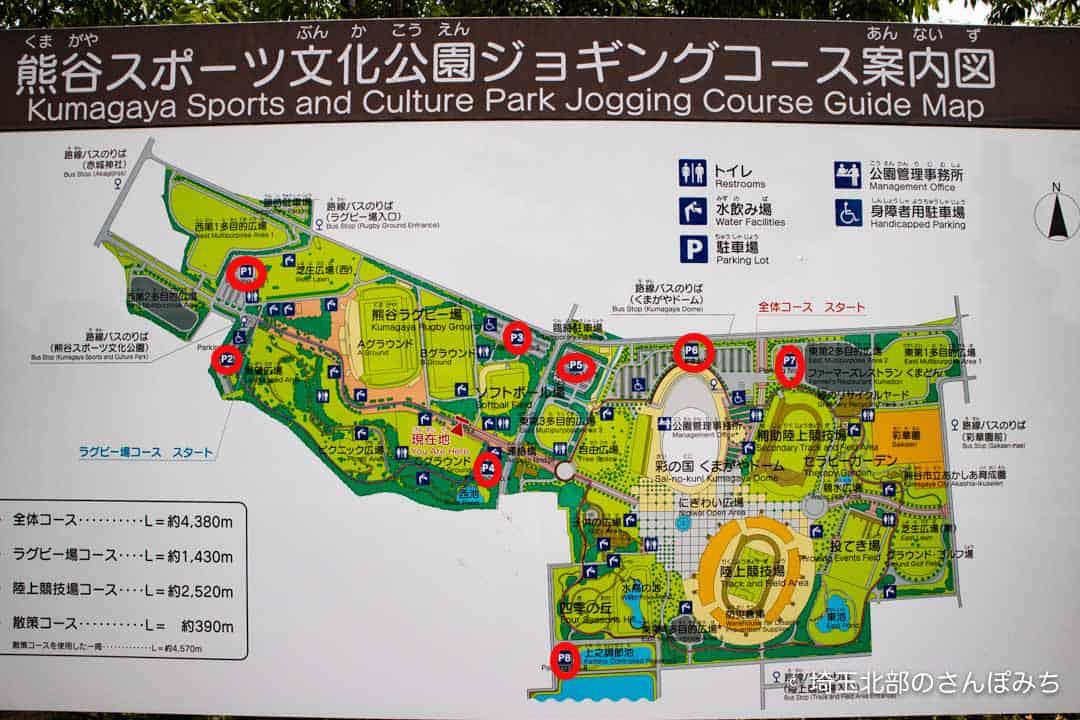 熊谷スポーツ文化公園駐車場
