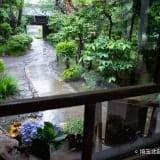 緑の庭に囲まれたくつろぎのカフェ。行田「カフェギャラリー高澤記念館」