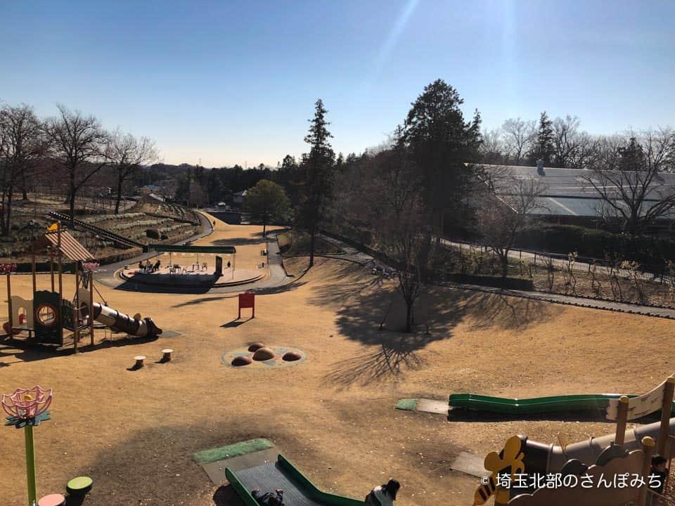 東松山ぼたん園遊具の上からの景色
