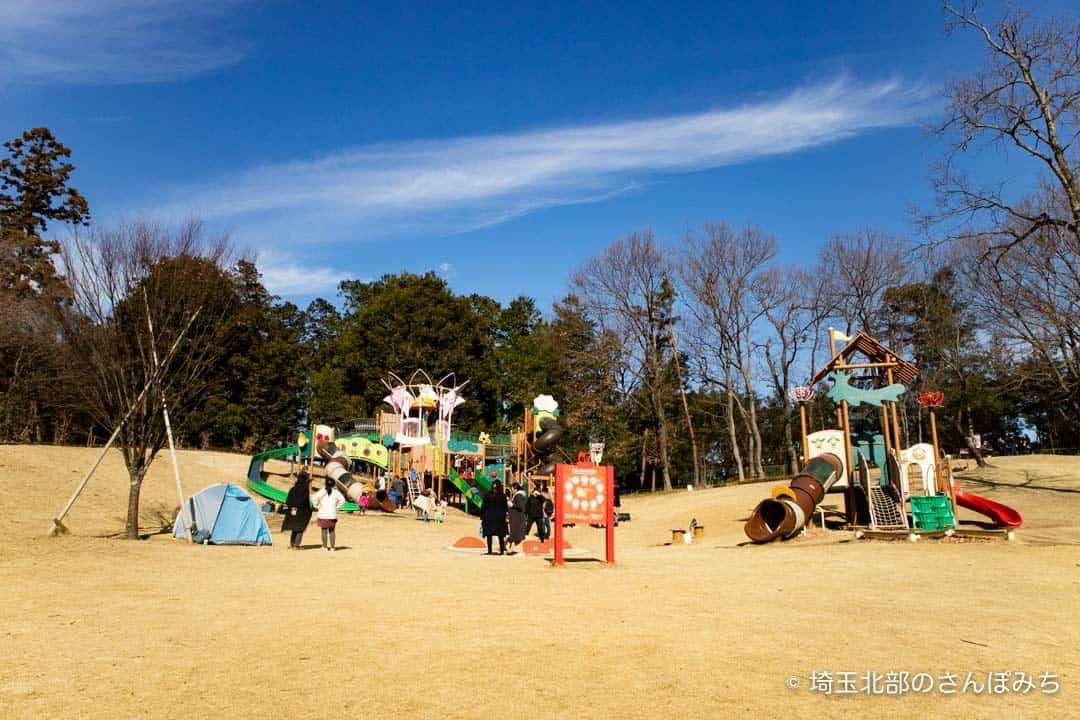 東松山ぼたん園遊具全体