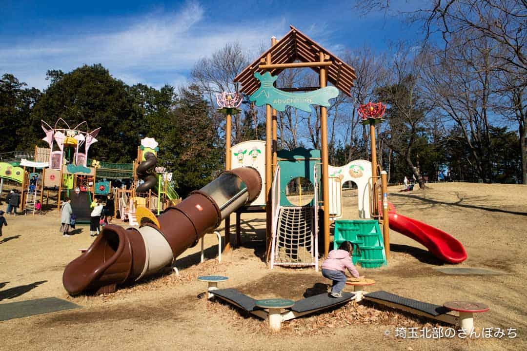 東松山ぼたん園幼児用の遊具