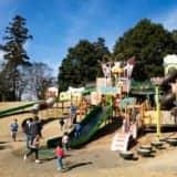 東松山ぼたん公園|大型遊具やローラーすべり台で子どもと遊ぶ!駐車場・入園無料