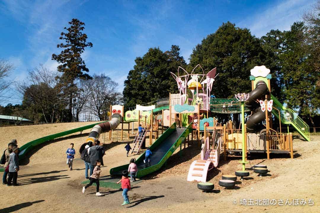 東松山ぼたん園小学生用の遊具