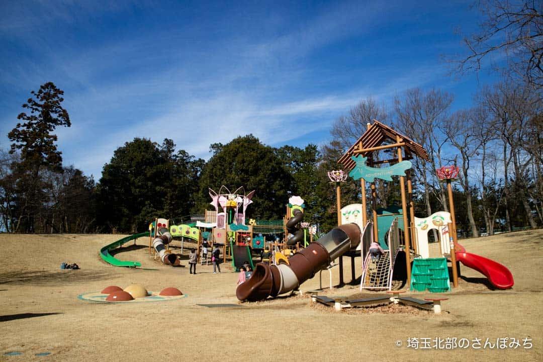 東松山ぼたん園大型遊具の全体