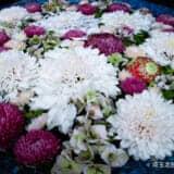 【行田八幡神社】封じの宮で有名なパワースポット!御朱印巡りや花手水で人気