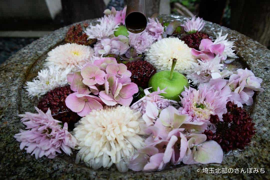 行田八幡神社の花手水6月-5