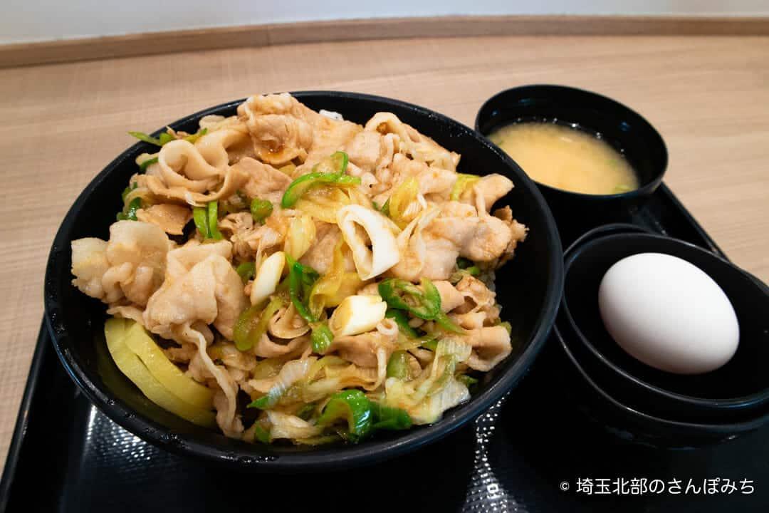 蓮田SA(上り)フードコートのすた丼