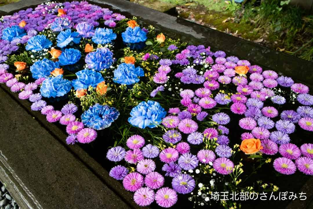 前玉神社の花手水10月