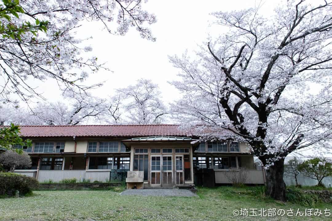 小川町下里分校の校舎と桜
