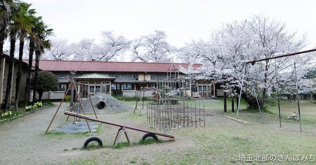 小川町下里分校の校庭と桜